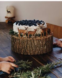Cake on top of log - figurines