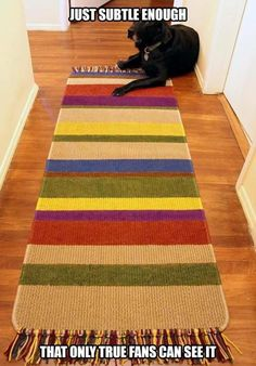 DIY Tom Baker Doctor Who Rug - Our Nerd Home Just subtle enough that most people would totally miss the reference. The Doctor, Serie Doctor, Harry Potter, Geronimo, Geek Out, Do It Yourself Home, Dr Who, Diy Home, Superwholock