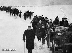 Germans fleeing the Russian advance 1945