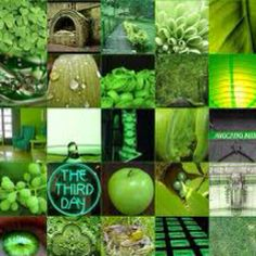 "I googled ""green"" :)"