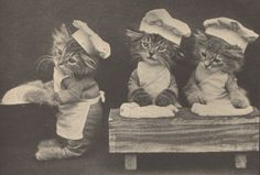 Apparently there was a guy named Harry Whittier Frees that would take horrifyingly cute picture of animals dressed up as people for children's books. These were the original cat memes before the internet even existed.