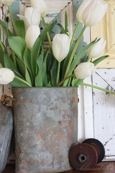 Layered Spring Mantel {2013} | MyBlessedLife.net // white tulips and rusty aluminum....oh yeah!