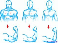 Proportion of the Human Body - Video Lesson by Drawing Academy ...