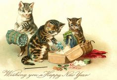 """""""From the life of cats."""" Discussion on LiveInternet - Russian Service Online Diaries Little Kittens, Cats And Kittens, Vintage Happy New Year, Ernst August, Image Chat, Grey Kitten, Three Cats, Cat Drawing, Christmas Cats"""