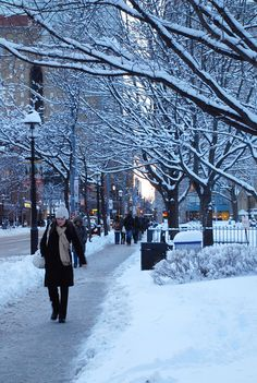 ***Toronto Winter Street (Ontario) by Mopiku Toronto Canada, Toronto Winter, Toronto Snow, Vancouver Winter, Places To Travel, Places To Visit, Winter Scenery, Winter Photography, Toronto Photography