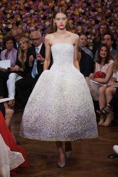 Haute Couture Aut/Wint 2012/2013 at Paris - Christian Dior