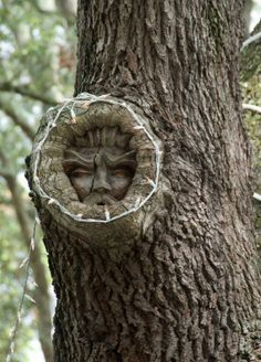 tree spirit swamp man spirits in the trees – Schnitzerei Tree Carving, Wood Carving Art, Wood Art, Wood Carvings, Natur Tattoos, Magical Tree, Tree People, Tree Faces, Tree Sculpture