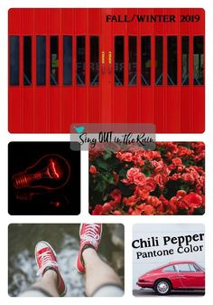 Chili Pepper is a spicy red that adds drama and excitement as it stimulates the senses & designated by Pantone as one of the Fall/Winter 2019 Color Trends.  #pantone #colortrents #fall2019 #chilired