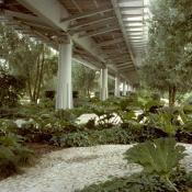 Gilles Clement: Jardins de l'Arche de la Défense. 1991-1998 (landscape)