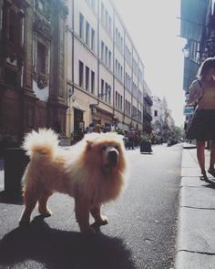 Palermo, Sicily Palermo Sicily, Fur Slides, Places To Visit, Places Worth Visiting