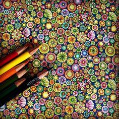 No.17 ② 少しアップで。 . #大人の塗り絵 #コロリアージュ #coloriage #アートセラピー #arttherapie #無心になれる #海の楽園 #ストレス解消 #大人女子 #指痛い #グラデーション #gradation #色鉛筆 #coloredpencil #coloringbook #colorful #lostocean #ジョハンナバスフォード #アンチストレス #大人の癒し #TOMBOW #旦那さんからのプレゼント #ペンだこ防止