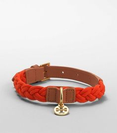 Tory Burch collar....if only i had a girl dog