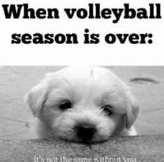 Just waiting for summer volleyball