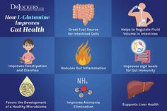 Leaky gut syndrome is the underlying factor in chronic inflammatory conditions. Here are 6 nutrients that heal leaky gut syndrome. Hernia Symptoms, Diverticulitis Symptoms, Hernia Exercises, Hiatus Hernia, Gut Inflammation, Candida Diet Recipes, Improve Gut Health, Leaky Gut Syndrome, Nutrition