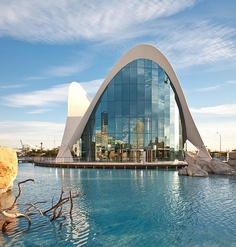 The main entrance of L'Oceanografic in Valencia, Spain as viewed from the side across the water.