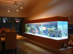 This article centers on aquarium inspiration pictures, 70 pictures that will open the mind to the possibility of a custom installation in a home or business Wall Aquarium, Nature Aquarium, Home Aquarium, Aquarium Design, Marine Aquarium, Reef Aquarium, Aquarium Fish Tank, Aquarium Ideas, Cool Fish Tanks
