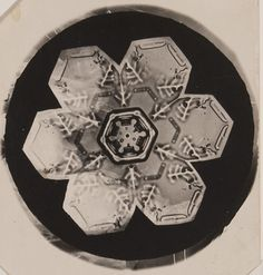 https://flic.kr/p/9GH4KG | Untitled (Snowflake) |  Artist: Wilson A. Bentley Artist Bio: American, 1865 - 1931 Creation Date: c. 1905 Process: gelatin silver photomicrograph print Credit Line: Museum purchase with funds provided by MoPA Photo Forum Accession Number: 2010.010.001