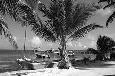 Beachfront Caye Caulker