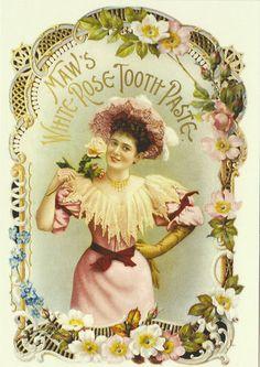 Robert Opie Advertising Postcard Maw's White Rose Tooth Paste | eBay