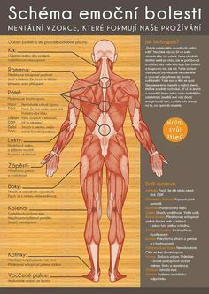 What Is Acupuncture // Emotional Pain Chart - Mind Body Connection Emotional Pain, Physical Pain, Emotional Healing, Acupressure, Acupuncture, Centripetal Force, Les Chakras, Stiff Neck, Negative Emotions