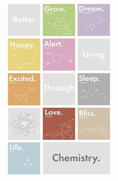 17 Color Image Print – Digitally printed on glossy paper – Comes in a cardboard backing – Ready to Frame or Hang as a Poster Better Living by Chemistry by Ryan Gardell Designed in 2011 with Adobe Illustrator. Chemistry Tattoo, Science Chemistry, Organic Chemistry, Science Art, Science Tattoos, Physical Science, Science Education, Earth Science, Science Experiments