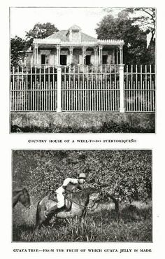 Observe la foto y otras mas de la epoca. Donde usted ve pobreza. La pobreza en Puerto Rico comenzo el 25 de julio de 1898, fecha de la invacion norteamericana