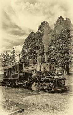 The Durbin Rocket is one of the rarest steam locomotives in existence. Old #3 is one of only three operating Climax geared logging Climaxs on earth. This 55-ton antique was built in 1910 for the Moore-Keppel Lumber Co. in Randolph County, West Virginia. Today she takes tourists along the Greenbrier River in Northern Pocahontas County. Sepia version.