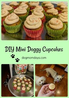 How to bake DIY mini doggy cupcakes. Full recipe o Cupcakes For Dogs Recipe, Dog Cake Recipes, Dog Cupcakes, Dog Biscuit Recipes, Dog Treat Recipes, Dog Food Recipes, Dog Birthday Cupcakes, Puppy Treats, Diy Dog Treats