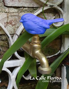 Garden Types, Garden S, Garden Plants, Landscape Design, Garden Design, Florida, Mediterranean Homes, Food Diary, Outdoor Projects