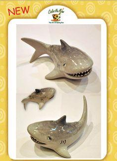 Shark Bank. Boy's Favorite! - Seoul Korea