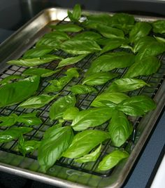 How to Dry Herbs in the Oven...this works so much better than hanging herbs to dry and the flavor is still good.