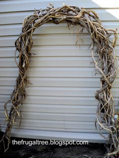 The Frugal Tree: Grapevine Galore! A grapevine arch