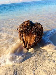 I Heart Coconuts- Bimini, Bahamas