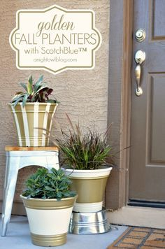 Golden Fall Planters - update plain planters with ScotchBlue Painter's Tape and Metallic Spray Paint from The Home Depot