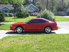 1994 Ford Mustang - 1994 Ford Mustang Accessories & Parts at CARiD.com - Fourth generation ford mustang: 1994 - 2004 - mustang 360 1994 - 2004 fourth generation ford mustang history pictures news events videos modified specs parts accessories and more at mustang 360. Speed sound 1994-2004 ford mustang gauge pillars Place an order for the best 1994-2004 mustang a-pillar gauge pods (us patent d529422) on this page.. 1994 ford mustang gt - motor trend magazine The 1994 ford mustang gt is…