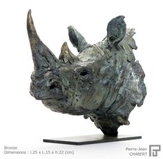 Rhino noir