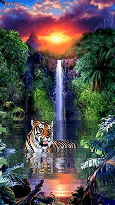 Tiger and waterfall Beautiful Nature Wallpaper, Beautiful Gif, Beautiful Artwork, Beautiful Landscapes, Animals Beautiful, Gif Pictures, Nature Pictures, Tiger Artwork, Mythical Creatures Art