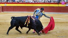 Walki byków Więcej informacji o Hiszpanii pod adresem http://www.hiszpania24.org/przewodnik/walki-bykow