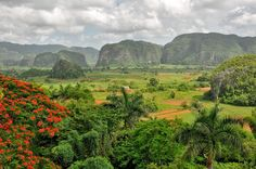 Vinales, Cuba. We had a fantastic hotel with this view!