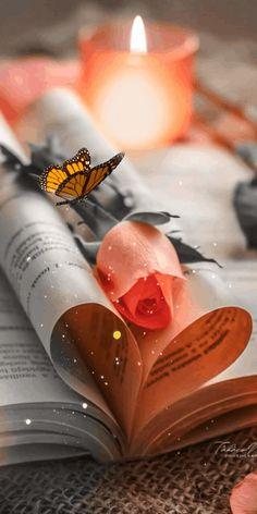 Book Wallpaper, Flower Background Wallpaper, Flower Phone Wallpaper, Heart Wallpaper, Butterfly Wallpaper, Scenery Wallpaper, Flower Backgrounds, Galaxy Wallpaper, Wallpaper Backgrounds