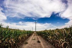De commissie ruimtelijke kwaliteit en cultuurhistorie van de gemeente Borger-Odoorn kan in grote lijnen instemmen met het plan voor 34 windmolens in die gemeente. Dat meldt RTV Drenthe.  Lees verder op onze website.