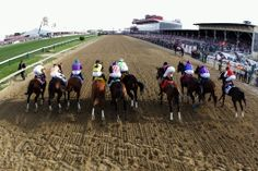 Just after the start of the 2014 Preakness.  Eventual winner California Chrome is #3.in the purple silks