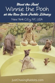 Meet the Real Winnie the Pooh at the New York Public Library in New York City, New York, USA   See the real Winnie the Pooh and friends Tigger, Kanga, Piglet, and Eeyore in NYC   Things to do in #NYC   Things to do in #NewYork   #WinniethePooh #PoohBear
