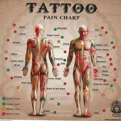 design a tattoo Wondering how much that next tattoo will hurt Check out this website first