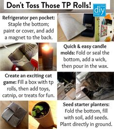 So many TP rolls, so little time.... what to do with them all? There's a lot of fun ideas out there for re-purposing old TP rolls, but I wanted to share a few things that we've done with them. My favourite, of course, is the cat toy. As you can see from the pic, both Mye and Razzle think it's the best. Kitty Games, Candle Molds, Cat Furniture, Handmade Home, Cat Toys, So Little Time, Fun Ideas, Cats And Kittens, Repurposed