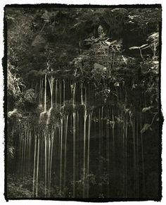 A waterfall in a forest. Shin 'Strength, beauty and nobleness: all characteristics reveal themselves to me'
