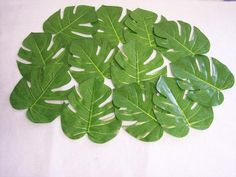 36-LARGE-NATURAL-TROPICAL-PALM-LEAVES-Luau-Wedding-Decorations
