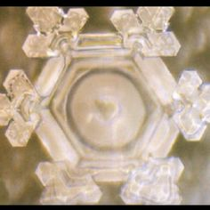 "Dr emoto thoughts on water - ""Thank you"""
