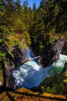 Little Qualicum Falls (Vancouver Island, BC) by Mark Bowen / 500px