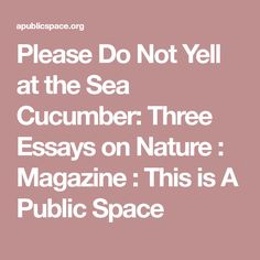 Please Do Not Yell at the Sea Cucumber: Three Essays on Nature : Magazine : This is A Public Space